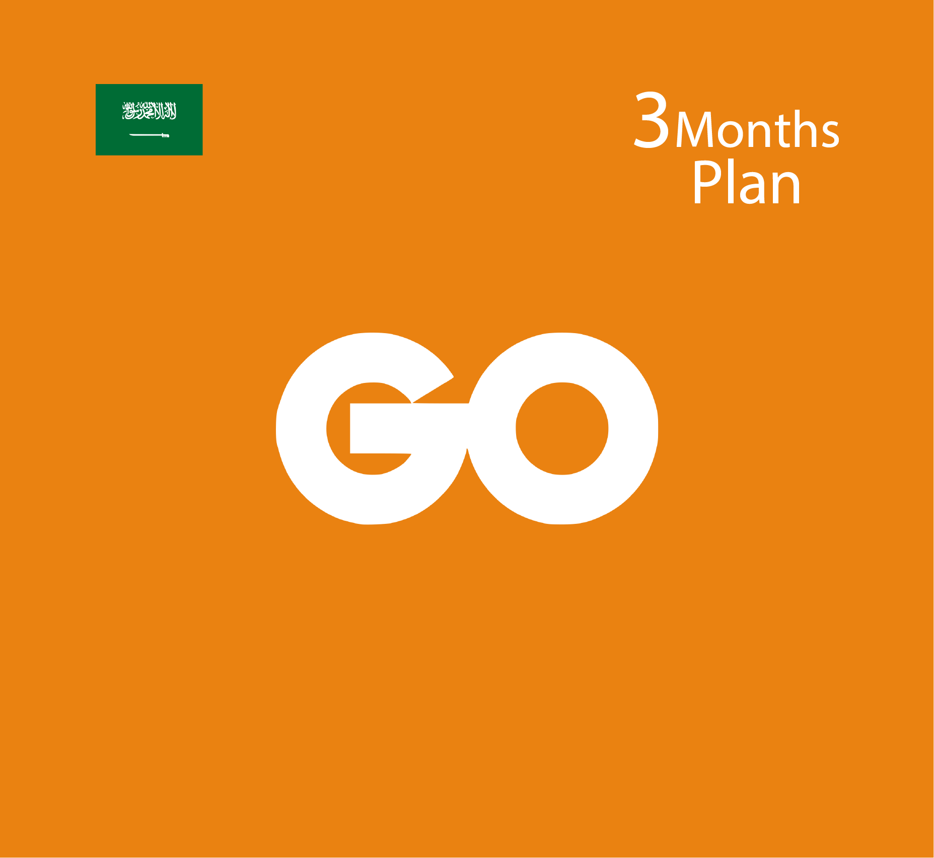 Go Card [KSA] - 3 Months Plan